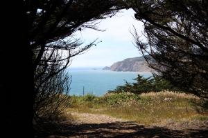 CHP Ocean View