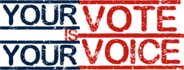 your-vote-your-voice1